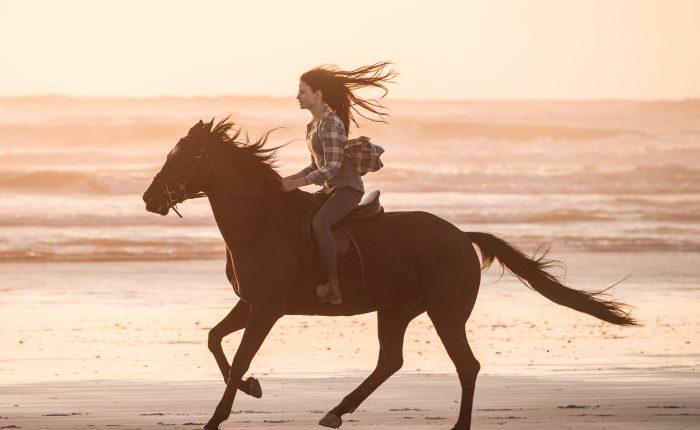 Black Beauty – Autobiografia di un cavallo
